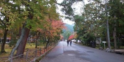 紅葉直前の京都