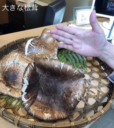 ゴーツで行くこだわりの食の旅京丹波の老舗で味わう松茸御膳