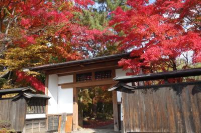 ☆観光地ではなく保存地区なので☆ 2020年11月 金ヶ崎町城内諏訪小路重要伝統的建造物群保存地区