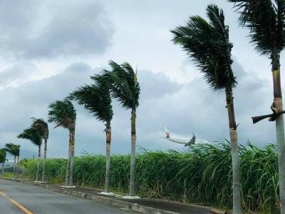 石垣島一周ドライブ