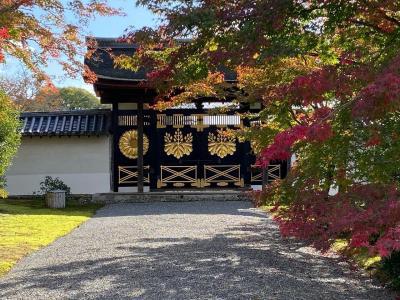 ひとり旅は秋の京都へ①   醍醐寺・霊宝館を2周する