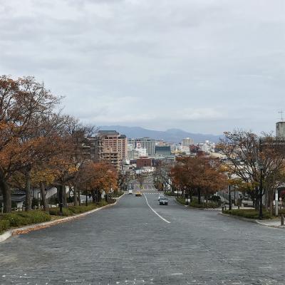函館散策 観光拠点はセンチュリーマリーナ函館
