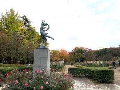 埼玉・与野公園の秋バラ2020