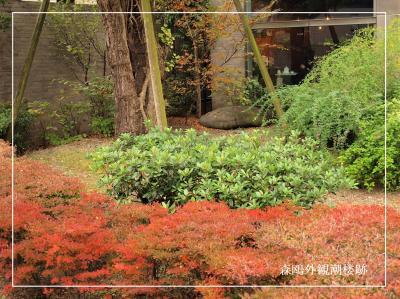 薮下通りを歩く/森鴎外旧居跡から根津神社裏門まで