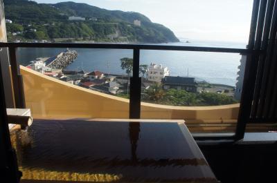 2020年6月 熱川バナナワニ園と稲取温泉貸切風呂の宿赤尾ホテル海諷廊 伊豆でお昼に食べたお寿司もおいしゅうございました