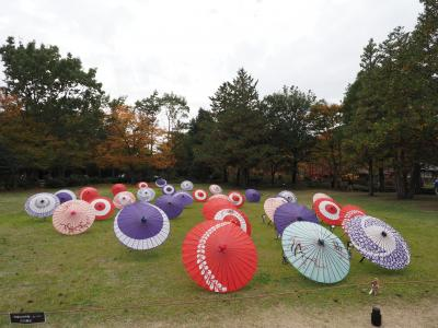 2020年11月<昭和記念公園・黄葉紅葉まつり・夜散歩>
