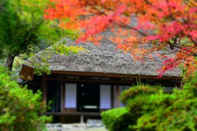 秋を彩る具だくさんの秘境『五家荘』 締めくくりにふさわしい左座家