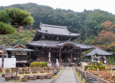 三室戸寺・醍醐寺
