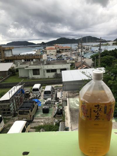 座間味島 旅行記③ 座間味2日目