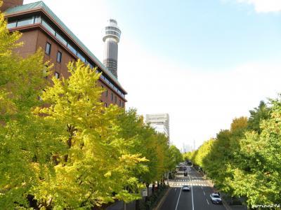 2020 秋深まる横浜散歩