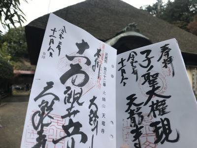 池袋から歩いて飯能を目指します~武蔵野三十三観音徒歩巡礼 最終回~
