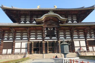 京都・奈良4泊5日の旅4日目①