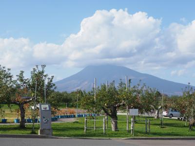 Go To 第五弾:弘前りんご公園で収穫体験、アップルパイ調達、りんごポスト撮影