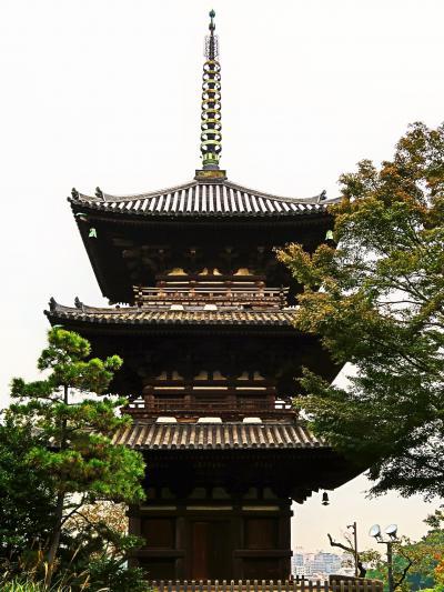 横浜16 三溪園d  旧燈明寺三重塔・松風閣-展望台辺り ☆石段・竹林を歩いて高台に