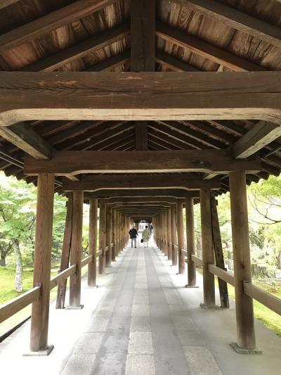 くもりのち雨のひとり旅!京都1泊2日①