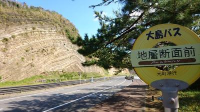 三原山登山と地層断面を見に!