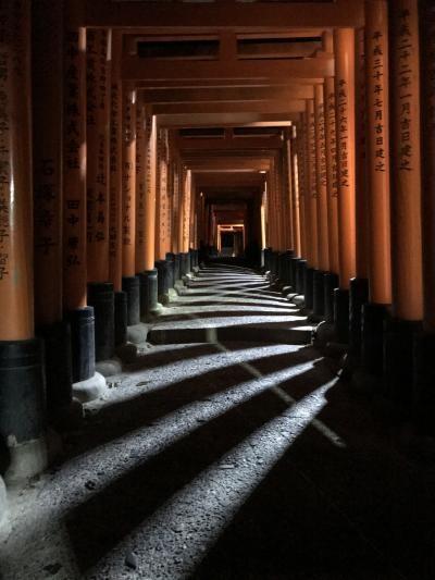 くもりのち雨のひとり旅!京都1泊2日②