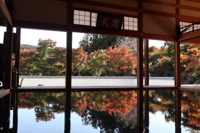 宝徳寺(群馬県)のリフレクションの景色☆床に映りこんだもう一つの世界