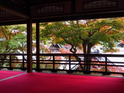 紅葉狩りに京都西山の楊谷寺へ