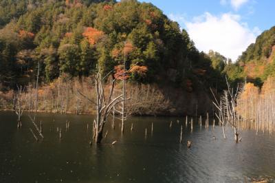 地震が作り出した天然の自然遺産自然湖&唐沢の滝&木曽馬の故郷開田高原♪