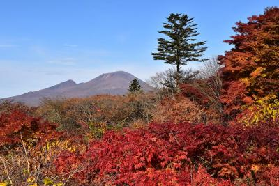 旧碓氷峠の美しい紅葉2020~見晴台から眺める絶景と熊野神社、旧軽井沢~(軽井沢)