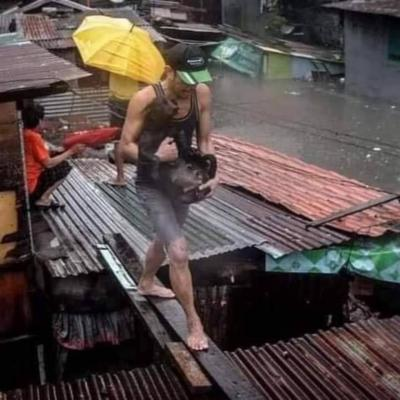 2020 年 11月 11日  マニラ直撃  大洪水  台風 22 号の VAMCO の 破壊力  ( ご報告 )