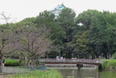 2020秋、名古屋城と名城公園(2/4):10月18日(2):名古屋城(1):名城公園からの天守閣、お堀、烏の行水、コブ白鳥