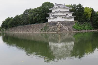 2020秋、名古屋城と名城公園(3/4):10月18日(3):名古屋城(2):お堀、コブ白鳥、天守、キンクロハジロ、清州櫓