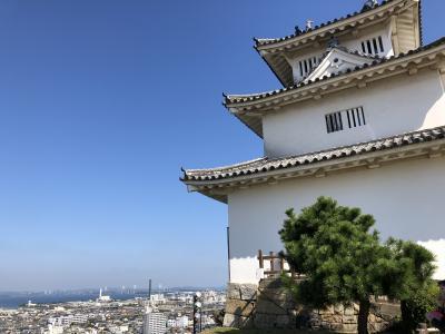 5・7歳連れ淡路島&高松ドライブ旅行:高松&丸亀編