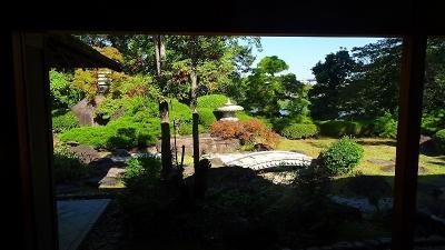 緑ヶ丘公園のさくらの丘へ・・・早咲き桜は無かった その4。