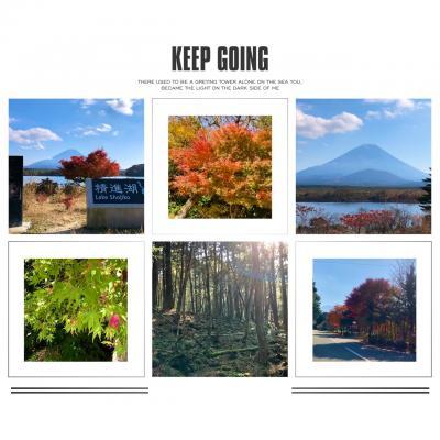 2020 富士山裾野ウォーク*樹海を歩く*