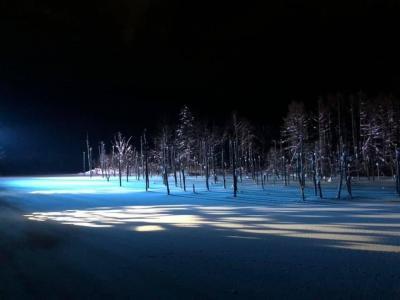 冬の美瑛の旅