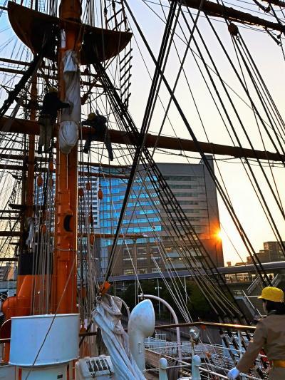 横浜23 帆船-日本丸 見学Course-2 ☆船長公室-通信長室-船医室-士官Salon-調理室--
