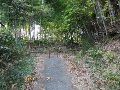 舞岡高下の山越え-2020年秋