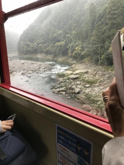 紅葉を探してーー25年ぶりの京都へ  Ⅱ
