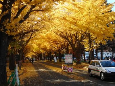 季節外れの夏休み。Go to トラベルで行く北海道の旅。 札幌でミシュラン堪能編。