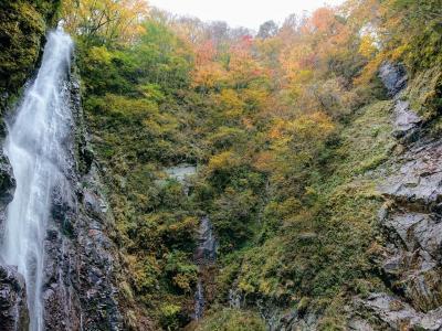 1泊2日 西丹沢 御殿場 河口湖紅葉巡り その1 西丹沢渓谷本棚ハイキング
