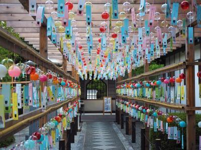 群馬桐生にある宝徳寺の風鈴まつりと夏の床もみじを見に出かけてきました
