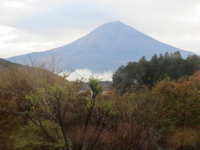 富士山が見たい!