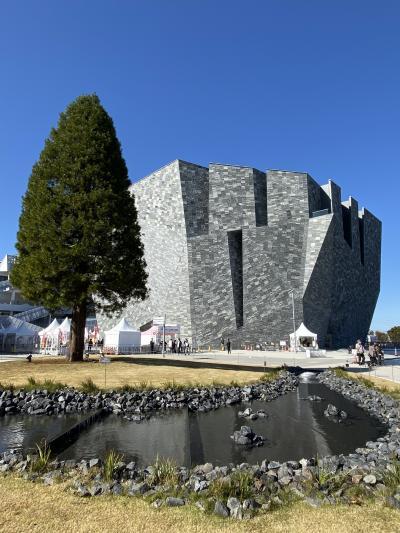 隈研吾設計の角川武蔵野ミュージアムと所沢航空公園