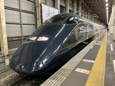 現美新幹線で新潟日帰り旅行 村上観光と笹川流れと極み寿司の弾丸一人旅