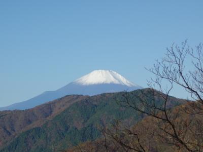 2020 神奈川県 父子2人旅~ 丹沢山 ~ 登山編 ~ どこまでも続く尾根道にヘトヘト、でも富士山素晴らしかった ~