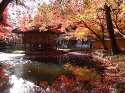 紅葉真っ盛り!レンタサイクルで平泉を回り厳美渓散策