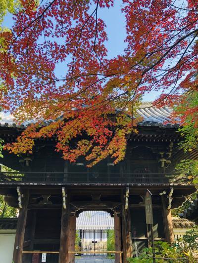 GoToトラベルで京の紅葉と『京都山科 ホテル山楽』ステイ♪