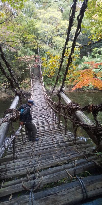 紅葉の四国その1松山ー紅葉狩りも良いけどアクティビティも色々楽しい!(2020年11月7日~14日)