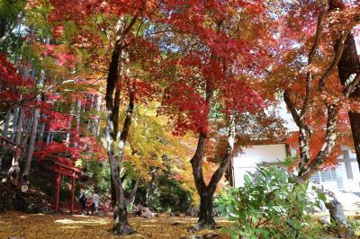 ちょっと早いけれど丹波・篠山の紅葉巡りに出かけて来ました