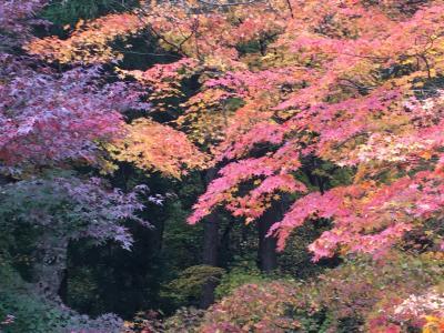 2泊3日でレンタカーを使い晩秋の山形県を巡る/想定していた以上に険しい山寺だった立石寺へ/その1