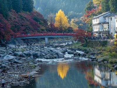 香嵐渓からの2020年紅葉狩り