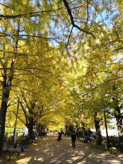 ☆ 立川パレスホテル スーパーホテルうたたねの湯☆グリーンスプリングス 昭和公園 No2