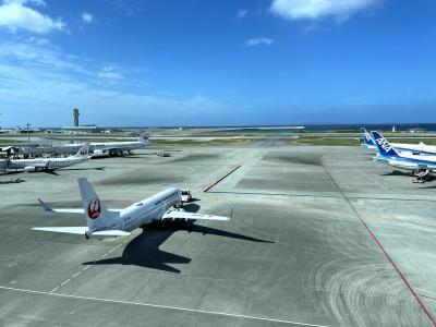 2020.11 【Go To Travel・vol.8】青組修行・那覇1泊2日!